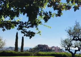 53 Via Primo Maggio, Loreto Aprutino, ,casa singola,Vendesi,Via Primo Maggio ,1090